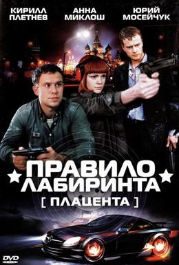 Постер фильма Правило лабиринта: Плацента (2009)