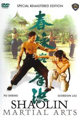Постер фильма Боевые искусства Шаолиня (1974)
