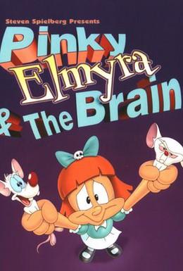 Постер фильма Пинки, Элмайра и Брейн (1998)