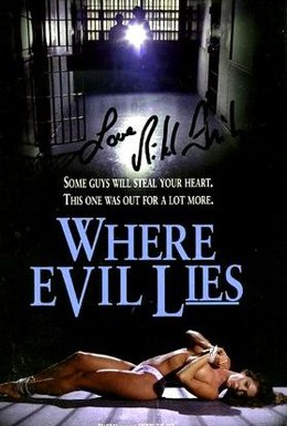 Постер фильма Там где покоится зло (1995)