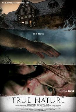 Постер фильма Истинная суть (2010)