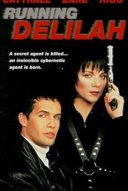 Постер фильма Специальный агент Дилайла (1993)