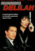 Специальный агент Дилайла (1993)
