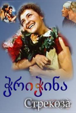 Постер фильма Стрекоза (1954)