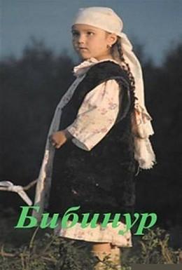Постер фильма Бибинур (2009)