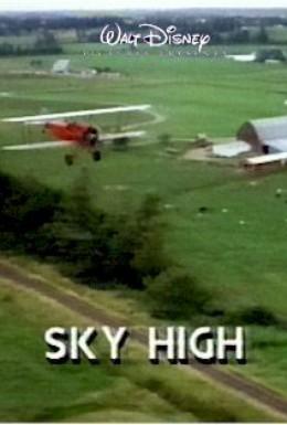 Постер фильма Небо высоко (1990)