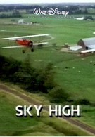 Небо высоко (1990)