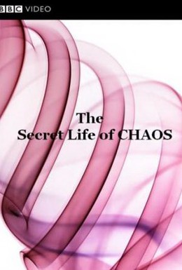 Постер фильма BBC: Тайная жизнь хаоса (2010)