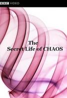 BBC: Тайная жизнь хаоса (2010)