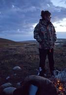 Аляска Сары Пейлин (2010)