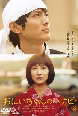 Постер фильма Фейерверк из сердца (2010)
