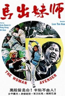 Постер фильма Леди мститель (1980)