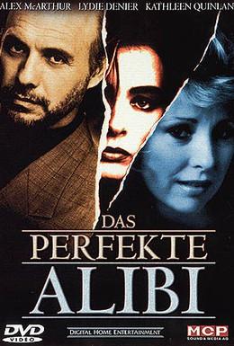 Постер фильма Идеальное алиби (1995)