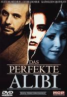 Идеальное алиби (1995)