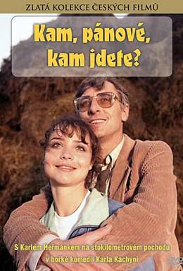 Постер фильма Куда, товарищи, куда идете? (1988)