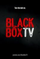 'Чёрный ящик'–ТВ (2010)