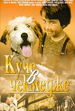 Постер фильма Собака в ящике (1982)