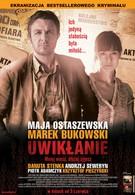 Запутанность (2011)