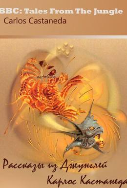 Постер фильма Концерт в Эбби-Роуд (2007)