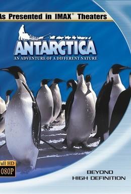 Постер фильма Антарктика: Путешествие в неизвестную природу (1991)