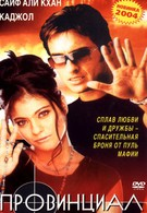 Провинциал (1996)