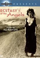 Ангелы в экстазе (1972)