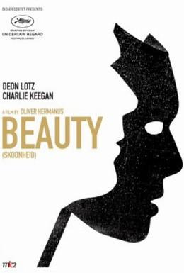Постер фильма Опасность красоты (2011)