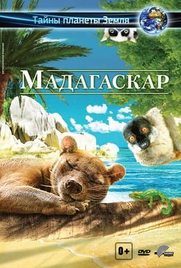 Постер фильма Мадагаскар 3D (2014)