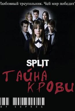 Постер фильма Сплит: Тайна крови (2009)