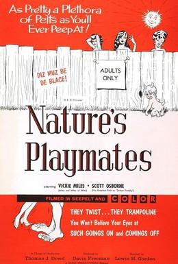 Постер фильма Естественные забавы (1962)