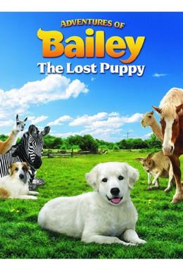 Постер фильма Приключения Бэйли: Потерянный щенок (2010)