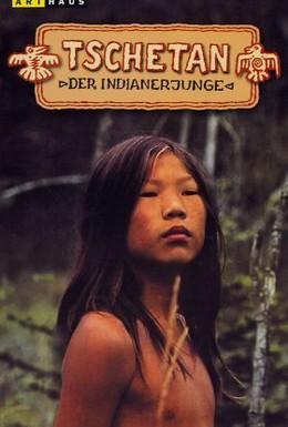 Постер фильма Четан – маленький индеец (1973)