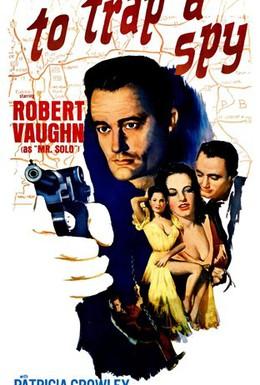 Постер фильма Поймать шпиона (1964)