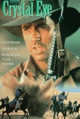 Постер фильма Проклятие хрустального глаза (1991)