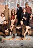 Частная практика (2008)