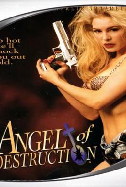 Постер фильма Ангел разрушения (1994)