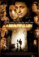 Красивая жизнь (2008)