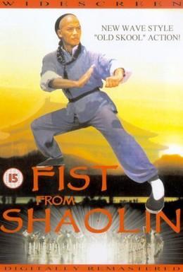 Постер фильма Кулак из Шаолиня (1993)