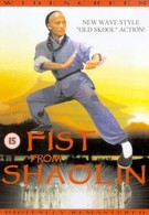 Кулак из Шаолиня (1993)