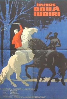 Постер фильма На берегах Ингури (1963)