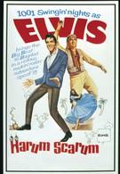 Каникулы в гареме (1965)