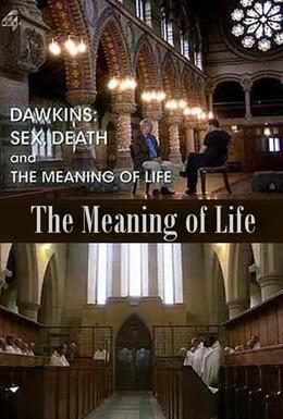 Постер фильма Секс, смерть и смысл жизни (2012)