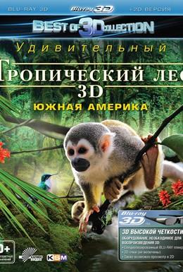 Постер фильма Тропический лес (2012)