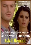 Запретная любовь (2008)