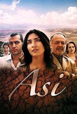 Постер фильма Аси (2007)