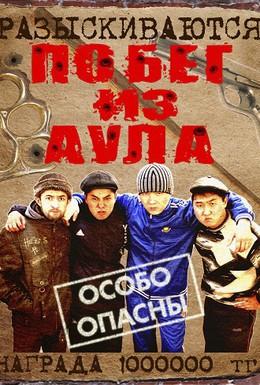 Постер фильма Побег из аула (2011)