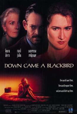 Постер фильма И спустился ворон (1995)