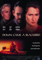 И спустился ворон (1995)
