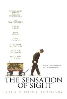 Постер фильма Ощущение видения (2006)