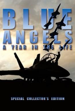Постер фильма Голубые ангелы: Год из жизни (2005)